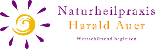 harald auer logo