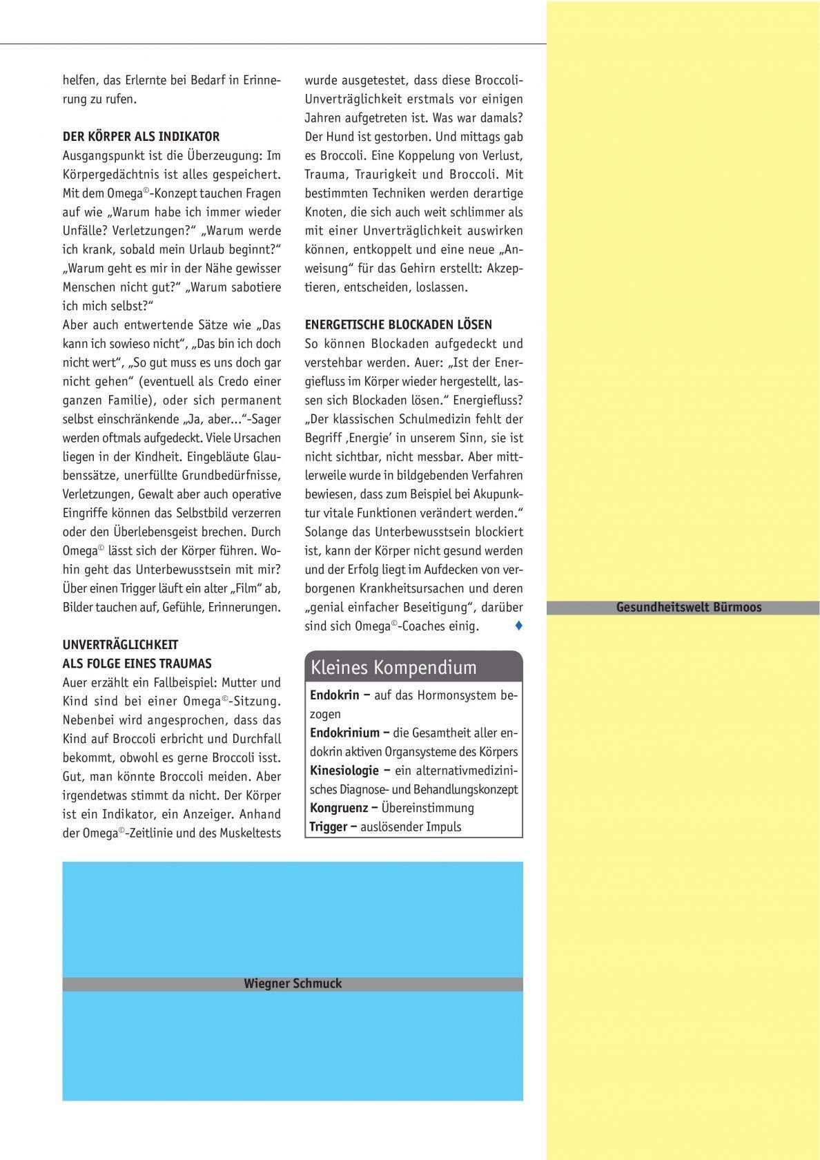 salzachbruecke-artikel-omega-healing-harald-auer-seite2